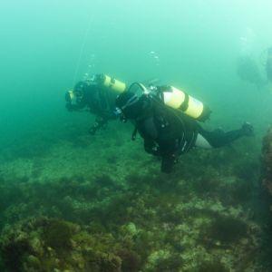 Cliffedge dive 3.jpg